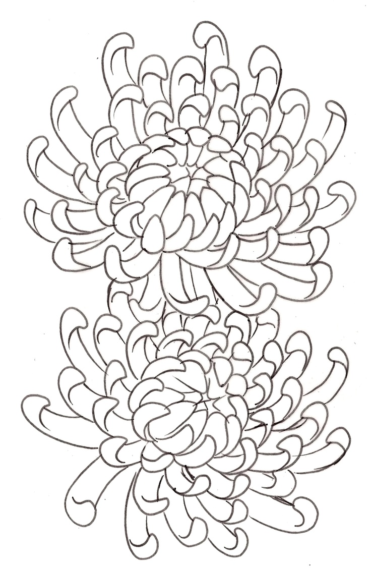 Line Art Aplic Flower Design : Chrysanthemum flower tattoo by metacharis on
