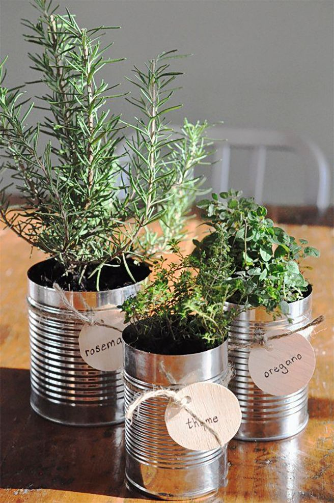 Horta Caseira: Temperinhos sempre à mão // #indoor #garden #herbs