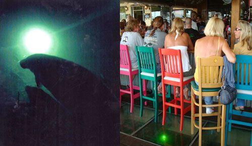 apparently amazing happy hour, The Pilot House Marina, Restaurant & Glass Bottom Bar in Key Largo, Florida