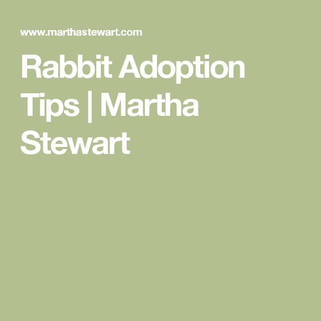 Rabbit Adoption Tips | Martha Stewart