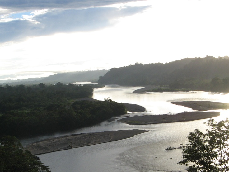Napo River, Amazon Jungle in Ecuador. This is the exact view from minga (or Yachana) lodge!