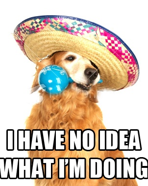 me in spanish class. i have no idea what i'm doing