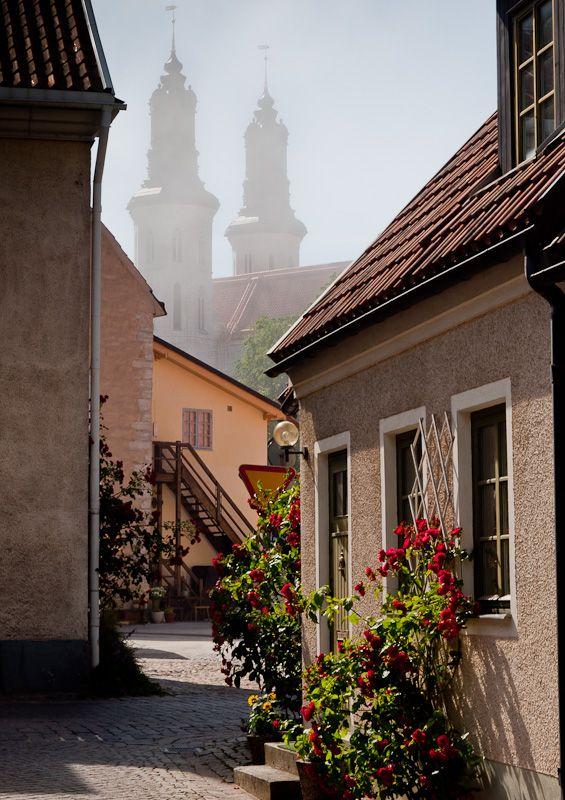 A street in Visby, Sweden by trevormoffiet