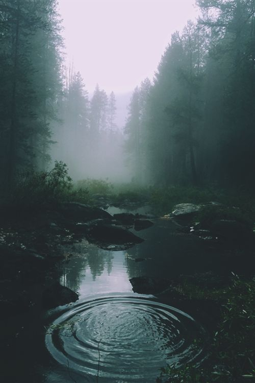 joel:  Rivers