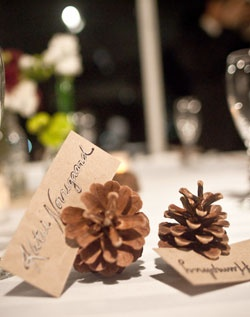 Pinecone seating cards.
