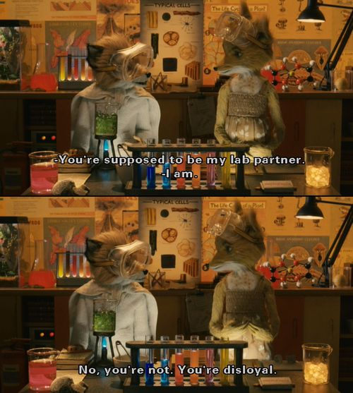 """you're disloyal.""-----Fantastic Mr. Fox."