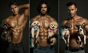 Hunks and hounds: 2015 calendar features topless men and rescue dogs #DailyMail