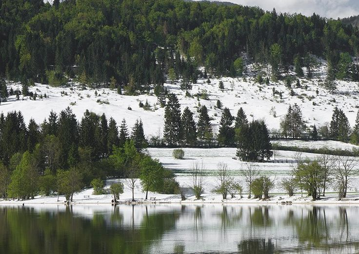 Free stock image of pure nature: Lake, mountains, snow and green trees. Forest and lake