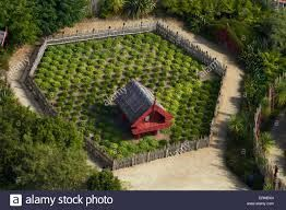 Image result for maori stone gardens