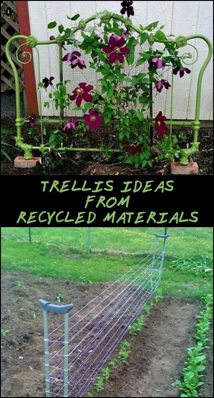 Making your own trellis has never been this easy or cheap! These simple trellis ideas won't cost you a fortune.