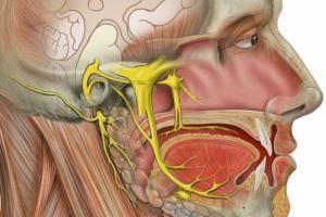 Cómo tratar la neuralgia del trigémino