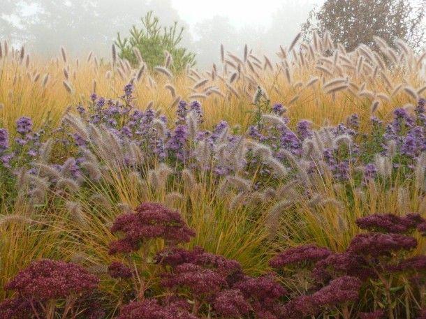 Niemalże czarodziejski ogród można znaleźć tuż pod Kaliszem. Arboretum w Trojanowie liczy sobie aż osiem hektarów. To tutaj możemy podziwiać między innymi bogatą gamę traw ozdobnych.