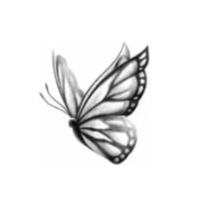 Tattoo butterfly this is the butterfly if always draw