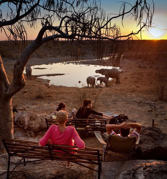 "Inspiration: An Affordable DIY Safari in Namibia. Contrary to common African Safari that offers luxury lodges, expert guides, and the whole Lion King menagerie set up for photos, Etosha National Park in Namibia offers ""lion sightings, elephant photo-ops and comfortable accommodations, without the oversized price tag"", which is uniquely set up for independent travelers."