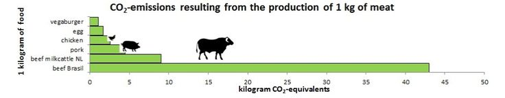 Voetprint Cooking® Meat? CO2-emissions resulting from 1 kg of meat