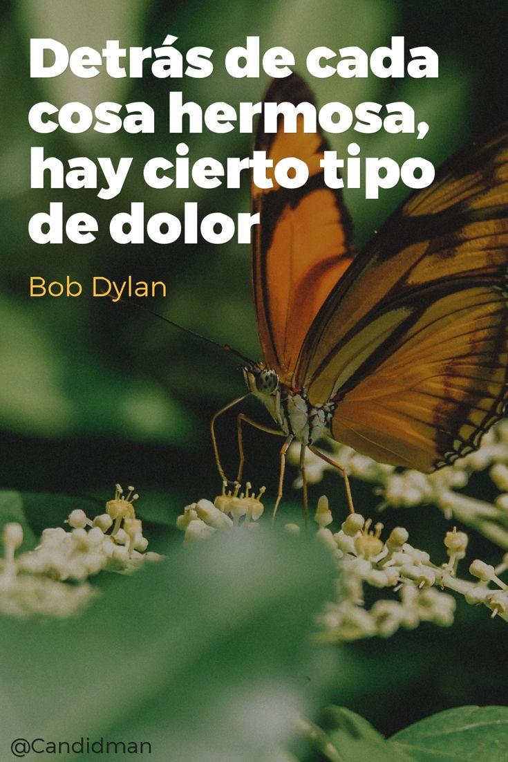 Detrás de cada cosa hermosa hay cierto tipo de dolor.  Bob Dylan  @Candidman     #Frases Frases Celebres Bob Dylan Candidman Dolor Hermosa Mariposas @candidman