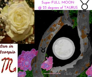 Full Moon in Taurus to unite our Body & Soul enjoying the simplicity of nature by releasing our fears just like a blooming Rose… Stellium Light - Zodiac Inspirations Australia
