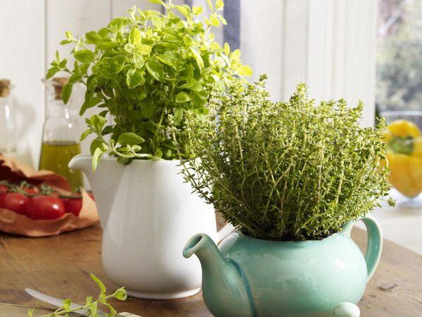 Jak Uprawiac Ziola W Domu Sposob Na Wszystko Porady Domowe Sposoby Jak Zrobic Old Tea Pots Tea Diy Planters