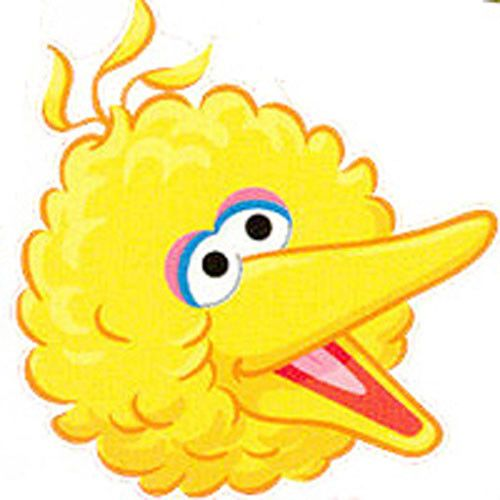 Sesame Street Big Bird Face
