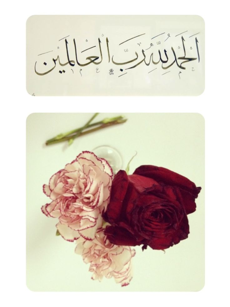 Alhamdulillah in Thuluth Calligraphy (Quran 1:2 – Surat al-Fatihah and Others)