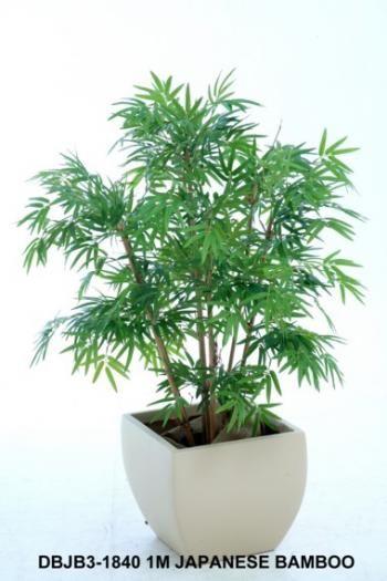 Japanese Bamboo