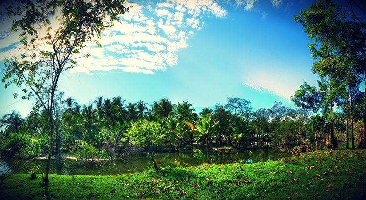 Coco Beach Panama, an exotic paradise. #land #paradise #panama