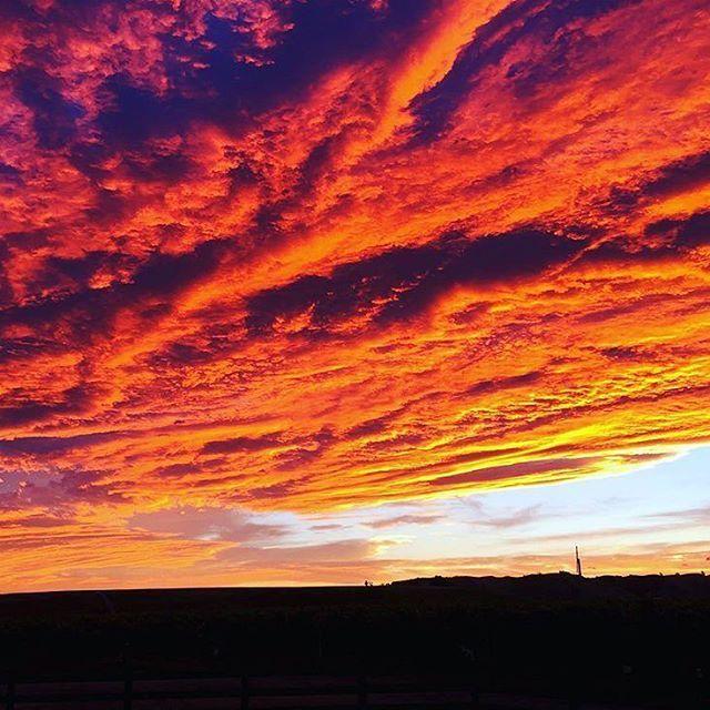 Stunning sunset last night! Repost @moanapark #hawkesbay #sunset #nature #greatthingsgrowhere ・・・ Beauty of a sunset tonight over the Mere Road Vineyard