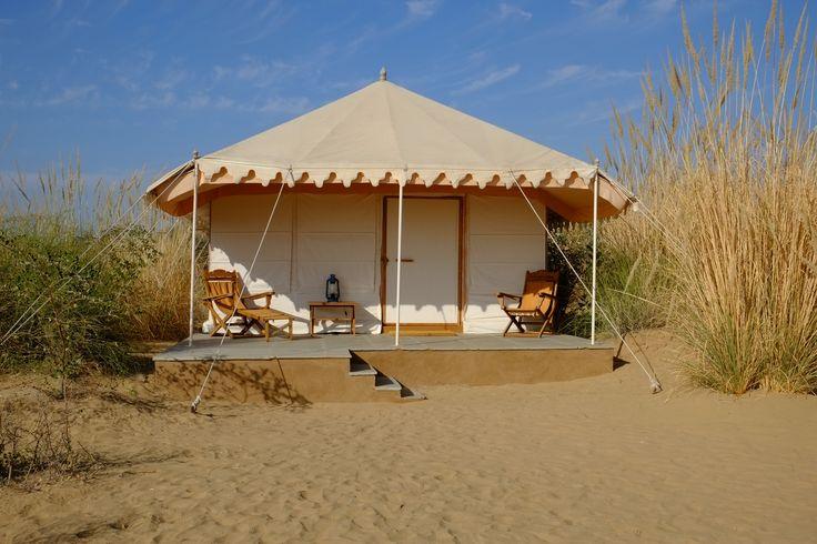 Un joli camp dans le désert du Thar entre Jaisalmer & Jodhpur... un pur d'air pu, le champ des oiseaux loin des klaxons, hum....