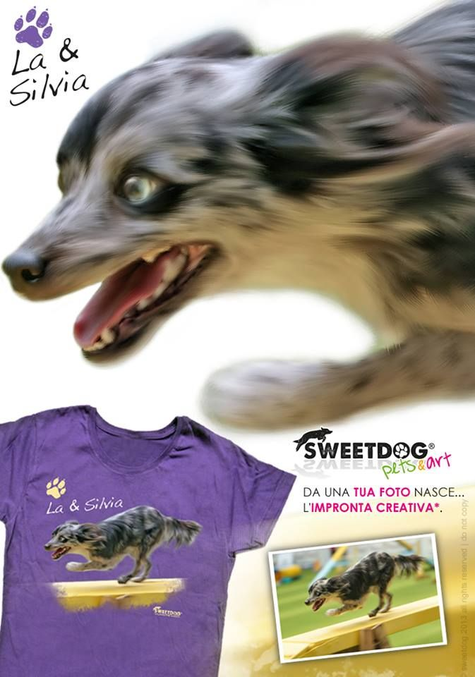 """personalized t-shirt  with your pet while practicing agility dog - t-shirt personalizzata del tuo cane mentre pratica agility dog   in foto: """"LA"""", Cane da pastore dei Pirenei."""