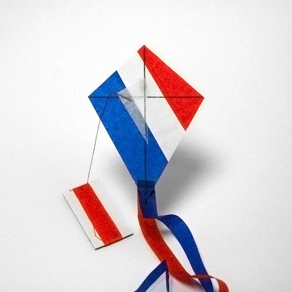 FRANCE flag kite http://kitecompany.com/collections/flagkite/products/france?variant=856565915