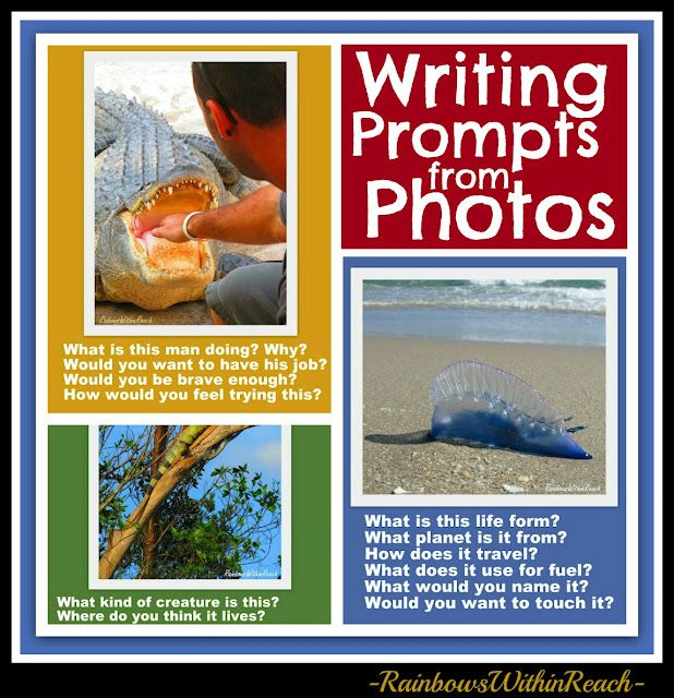 Writing Prompts from Photographs: Alligator, Iguana, Man of War and more! (could be used as conversation starters as well)#Repin By:Pinterest++ for iPad#