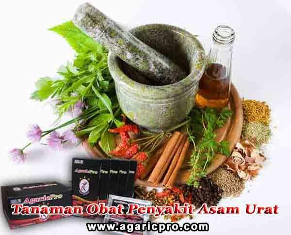 Makanan dan Herbal Untuk Penderita Diabetes Melitus