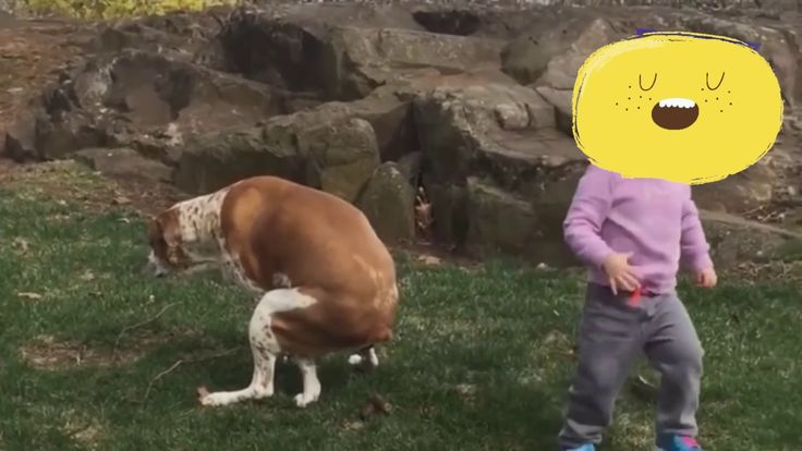 Funny Kids and the things they do - see how long you go without laughing