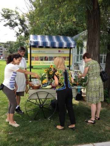 CAMH's Sunshine Garden market cart, selling produce on Monday & Wednesday this summer!