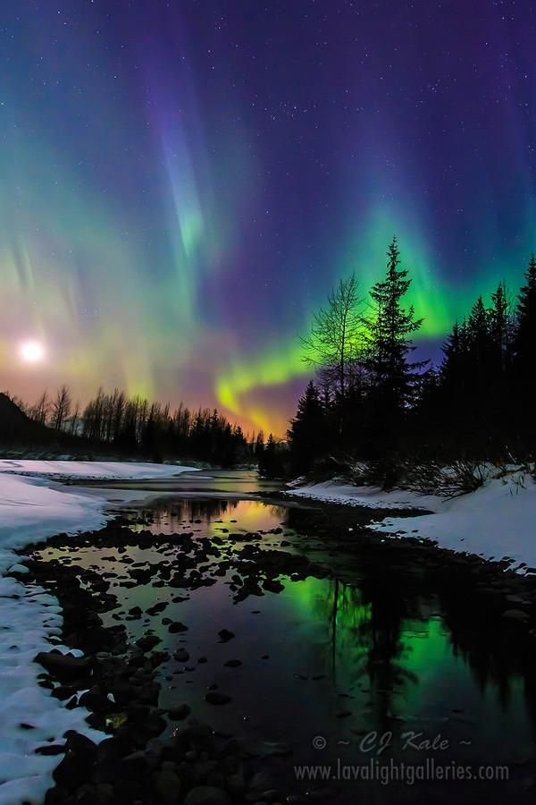 Aurora moonset,  Alaska   Photo by Cj Kale Wish I could have seen this in Alaska last month but guess it was to warm:(