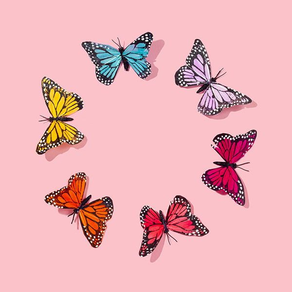 Butterfly Circle Aesthetic Iphone Wallpaper Cute Wallpaper
