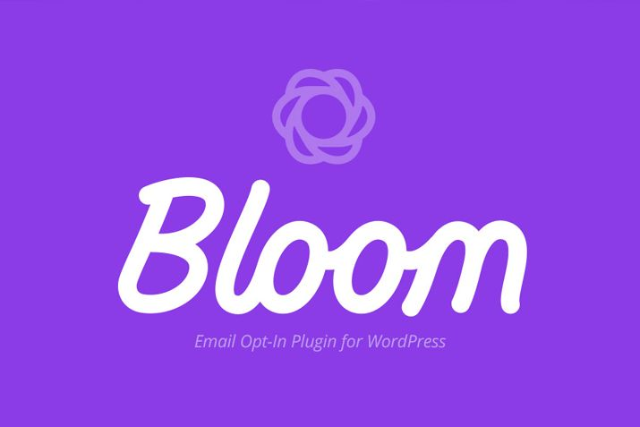 Newsletters – Bloom Email Subscribers 1.2
