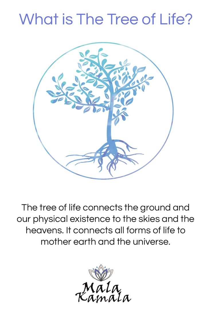 The tree of life connects the ground and our physical existence to the skies and the heavens. It unites all forms of life to mother earth and the universe. It is widely recognised and cited in many faiths and cultures including Christianity, Buddhism, Islam, Judaism, Hindu and Baha'i - all over the world, uniting all of humanity and the universe as a whole.