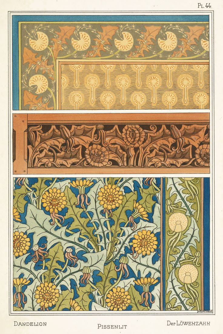 Maurice Pillard Verneuil Art Nouveau Illustration: Dandelion - Pissenlit - Lowenzahn