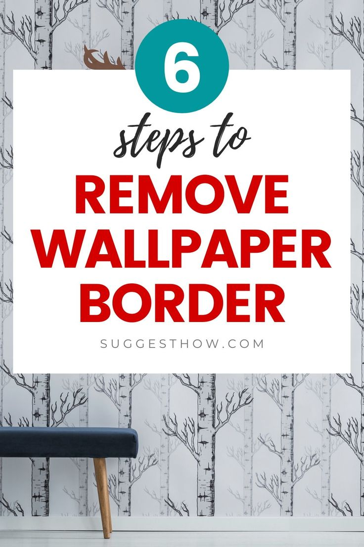 How to Remove Wallpaper Border - 6 Steps to Follow in 2020 ...