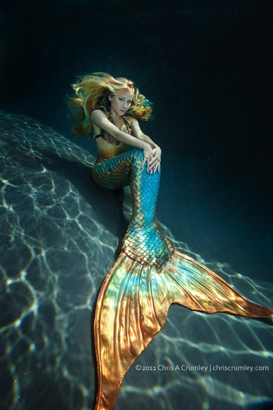 50 best images about Mermaid Tail designs on Pinterest ...