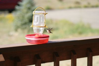 I do get tired of buying these, year after year!  DIY hummingbird feeder