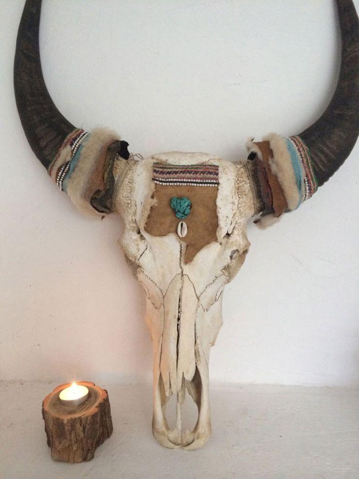 12x buffel schedels aan de muur stijl danny kamer?