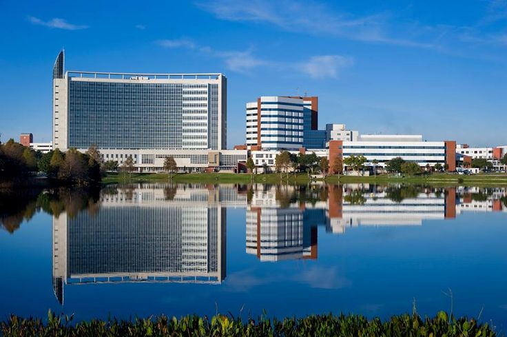 The August 2013 issue of U.S. News and World Report ranked Florida Hospital – a member of Adventist Health System – as the #1 hospital in the U.S. state of Florida. It also ranked the hospital and its network in the nation's top 30 for treatment of endocrinology and in the top 10 for gynecology. [photo courtesy Florida Hospital]