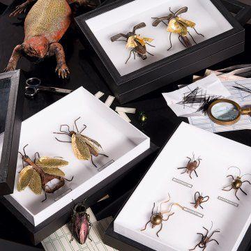 Des insectes en matériaux de récup