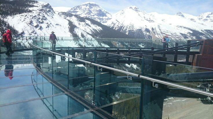 #Glacierskywalk near Columbia Icefields, awesome experience