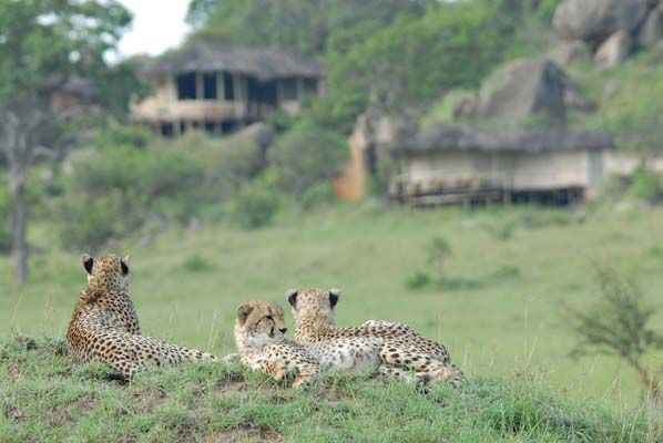 African safari accommodation at Lamai in the Serengeti, Tanzania.
