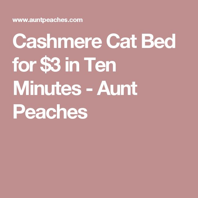 Cashmere Cat Bed for $3 in Ten Minutes - Aunt Peaches