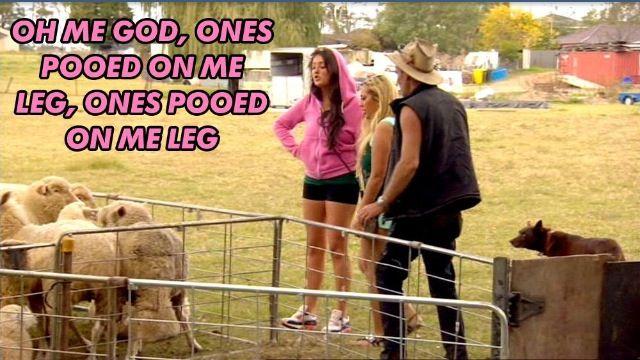 Geordie shore. Geordie shore quote. Sheep. Charlotte. Sophie.
