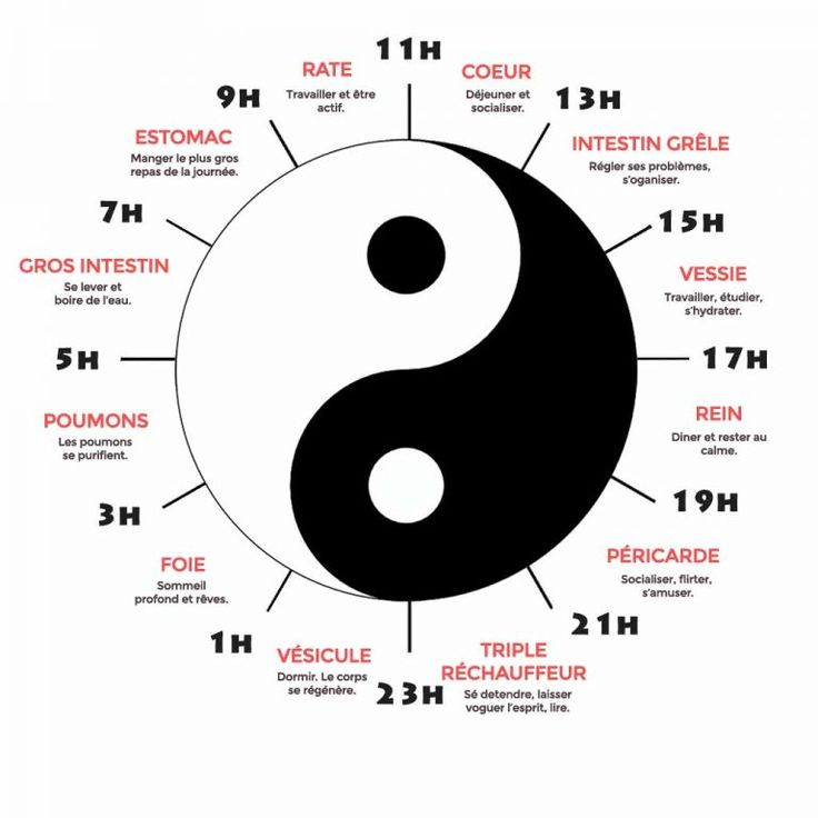 horloge du  corps